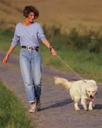 Promener le chien fait partie des astuces pour faire plus de pas quotidiennement