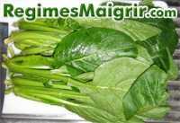 Le komatsuna fait partie des aliments très nutritifs et pourtant peu célèbres