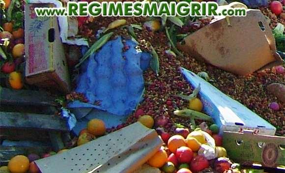 Plus de 1,3 milliard de tonnes de nourriture partent à la poubelle chaque année