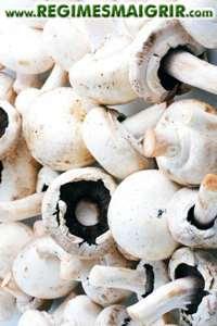 Faites dorer les champignons 5 minutes au moins sous le soleil pour multiplier leur teneur en vitamine D de 8 fois