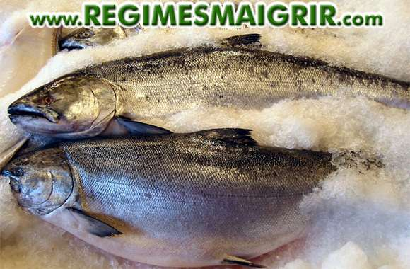 Le saumon fait partie des aliments thermogéniques