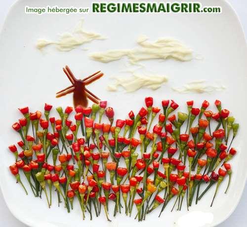 Champ de fleurs fait à base de piments de diverses couleurs