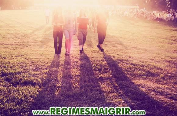 Un groupe d'amis fait de la marche dans un parc sous la lumière matinale du soleil