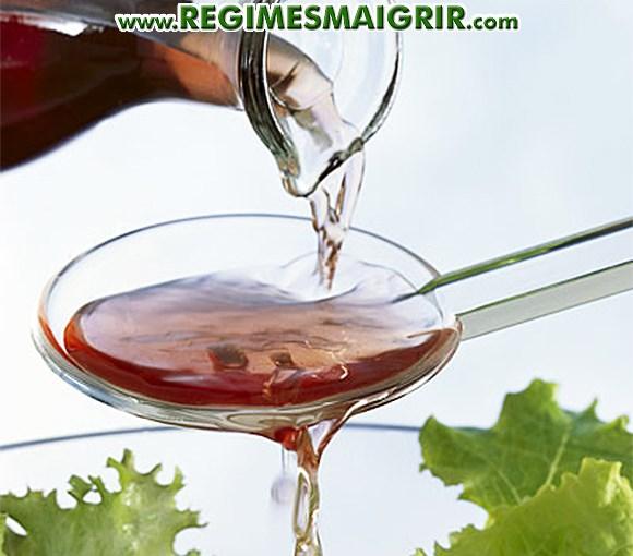 Vinaigre bienfaits et risques valeurs nutritionnelles - Dosage vinaigre blanc contre pucerons ...