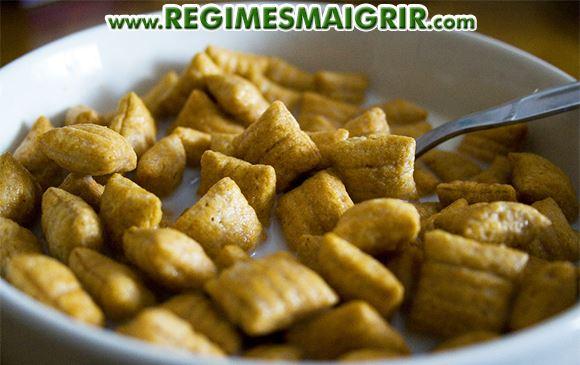 Des céréales de couleur marron sont posées dans un bol de breakfast