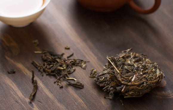 Le thé pu-erh posé à côté d'un théier
