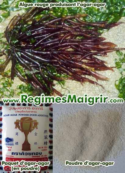 Photo de l'algue rouge agar-agar ainsi que d'un paquet de poudre d'agar
