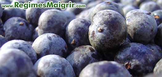 L'acai berry est une baie très riche en nutriments