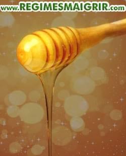 La substance mielleuse riche en antioxydant pourrait aider les gens à mieux stabiliser leur poids