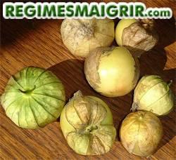 Le tomatillo pousse dans les pays tropicaux