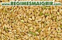 Des grains de riz brun posés les uns à côté des autres