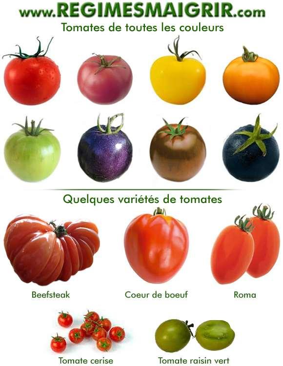 Quelques couleurs et variétés différentes des tomates