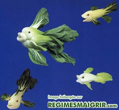 Un poisson-mère et ses enfants faits de bok choys