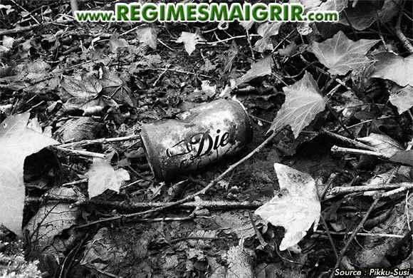 Ce qu'une canette de Coca contient ne mérite pas d'être bu