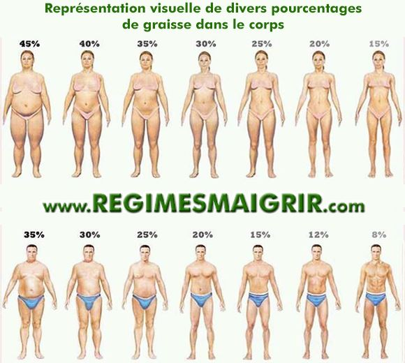 Voici ce à quoi correspondent divers pourcentages de graisse dans le corps d'une femme et d'un homme